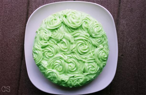 cake smash4