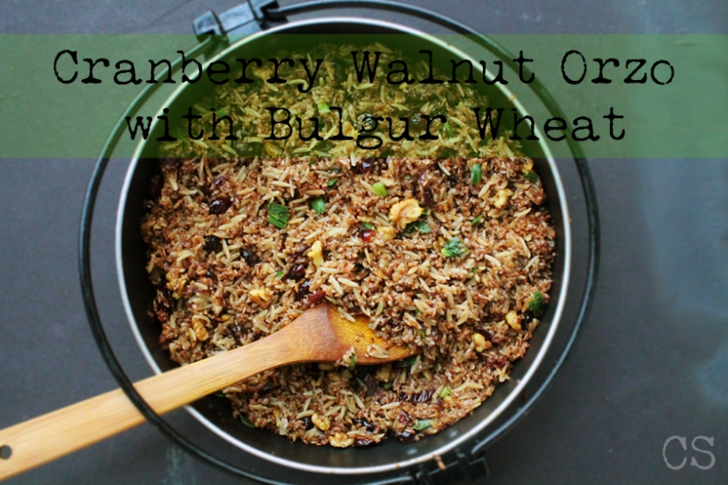 Cranberry-walnut orzo2